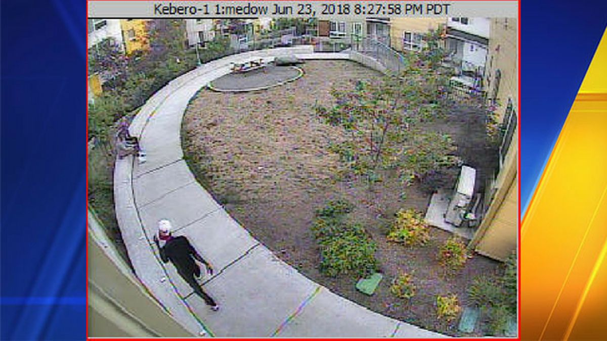 After attempted kidnapping, Seattle police search for suspect seen on camera