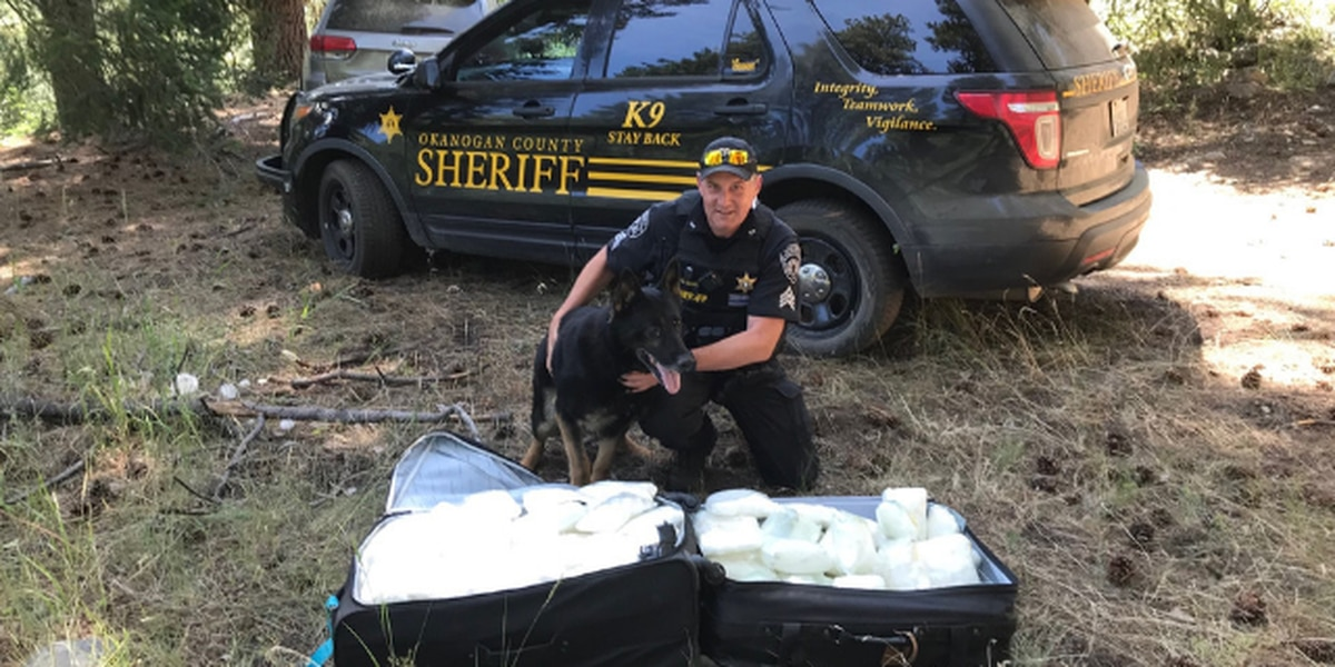Suitcases containing $1 million worth of meth found in Washington forest