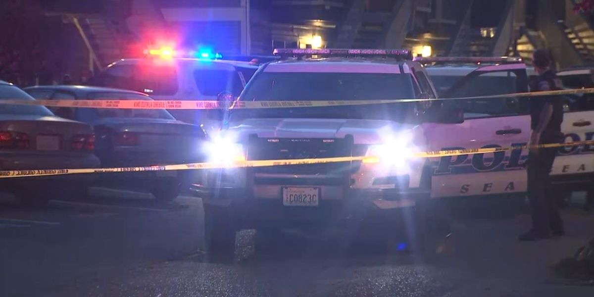 Woman dead, man in custody after stabbing in SeaTac