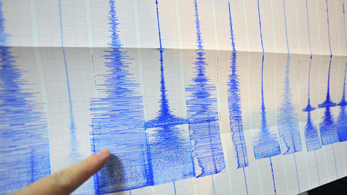 File photo of a a seismic chart after a 6.4 magnitude earthquake