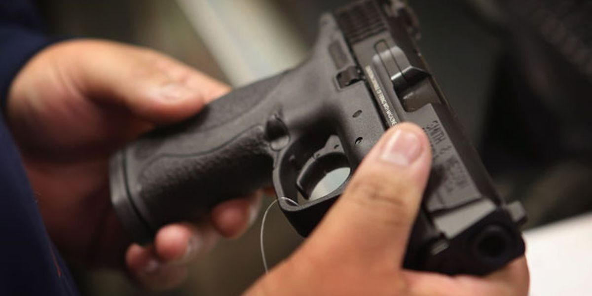 Initiative 1491 would allow temporary suspension of firearms access