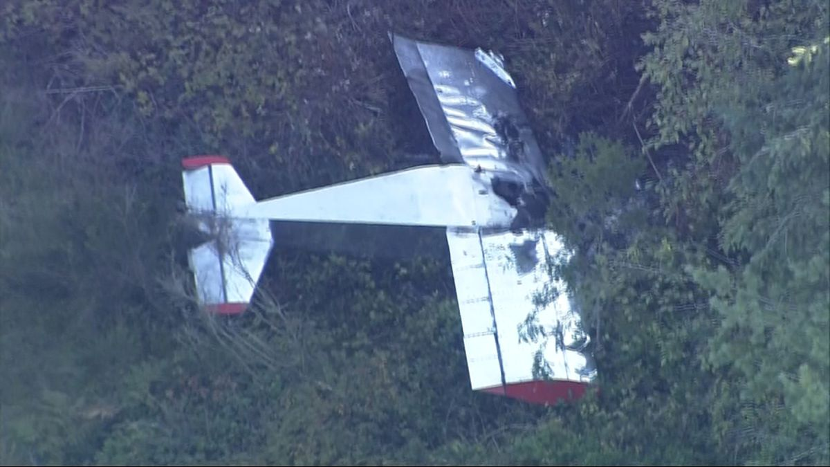 Small aircraft crashes, catches fire on Whidbey Island