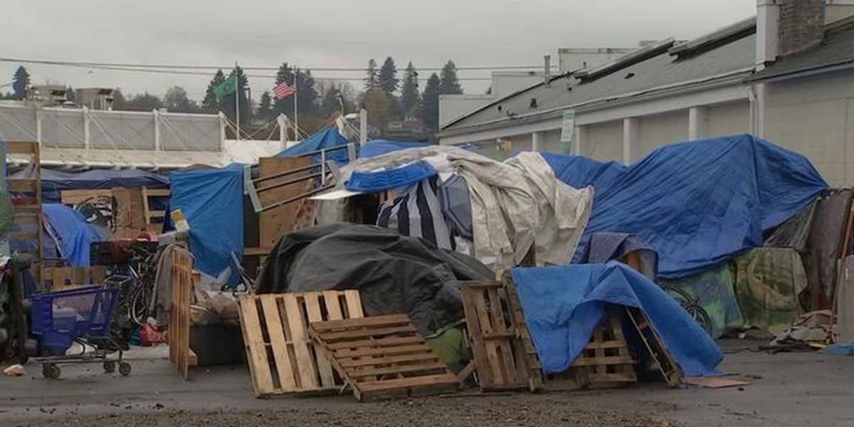 Judge halts Olympia homeless camp, but some campers can stay