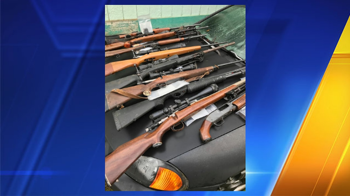 Deputies seize drugs, 54 firearms, dog that tested positive for meth after serving warrant