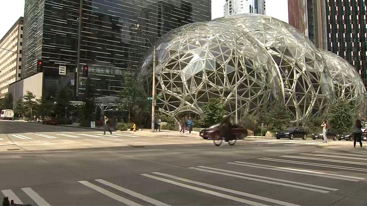 Elizabeth Warren slams Amazon for $1 million donation to change Seattle City Council