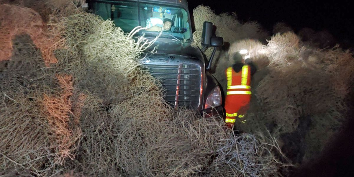 Cars get trapped in tumbleweeds on highway near Richland