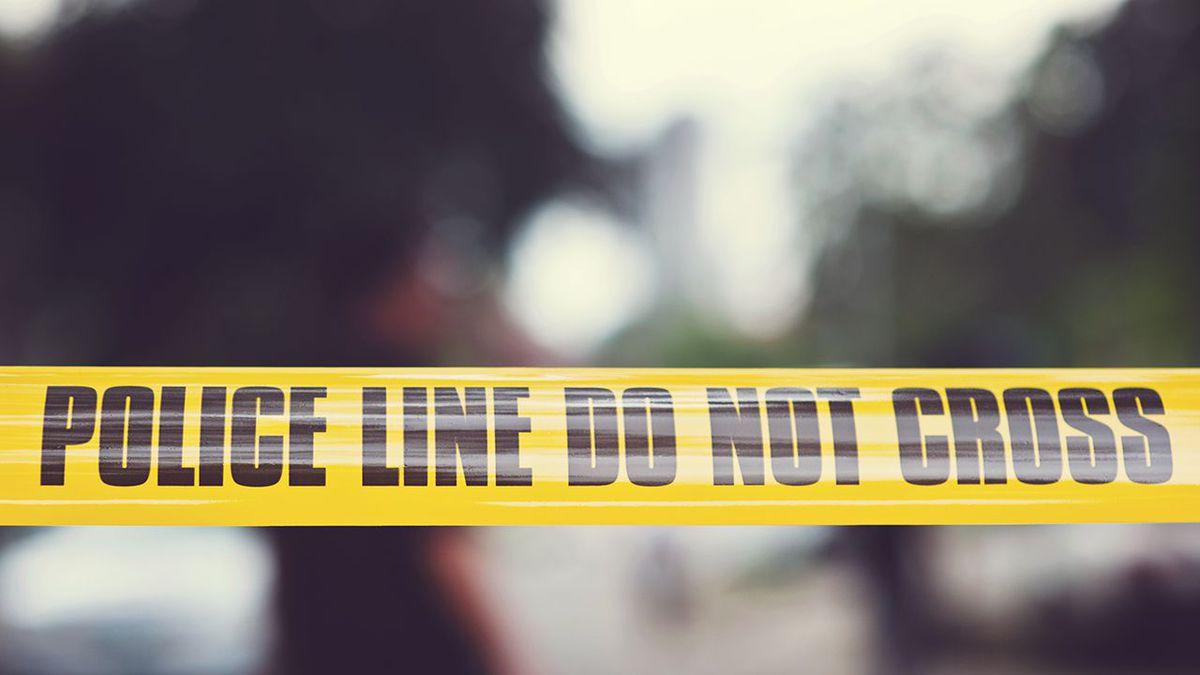 'He armed himself': Phoenix police push back against body camera footage pleas in driveway shooting