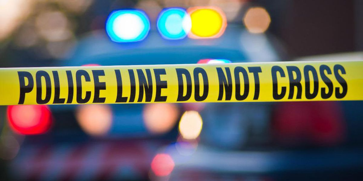 Everett police investigating crash after man hit by bus