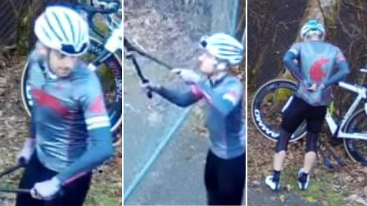 Thurston County deputies: Can you ID this cyclist who used bolt cutters to damage fence?