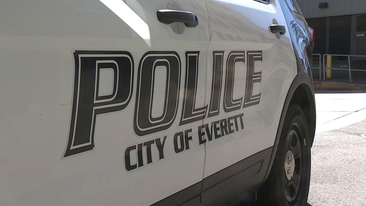 Police: Man with pellet gun shot at trooper, Everett police cars