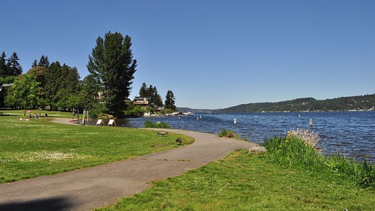 Death of man found in Seattle's Matthews Beach Park ruled a ...