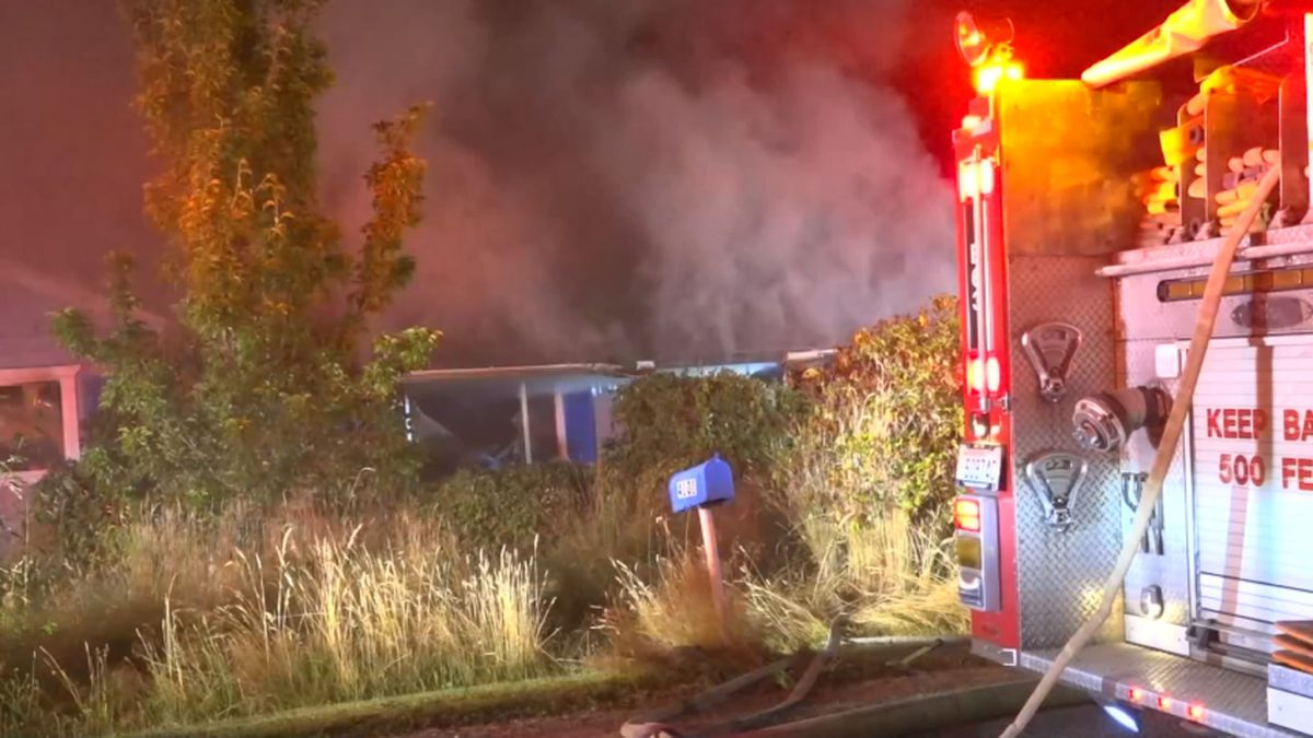 Man injured, 3 dogs killed in Summit house fire