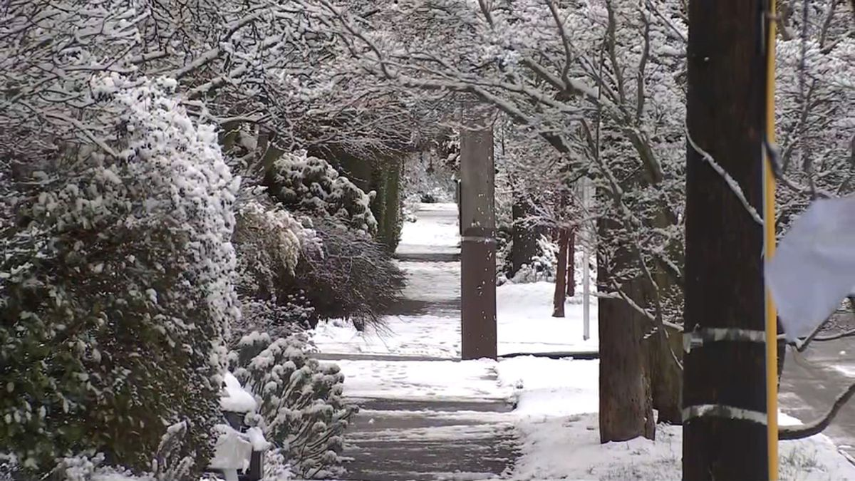 Has your street in Seattle been cleared? Check this map