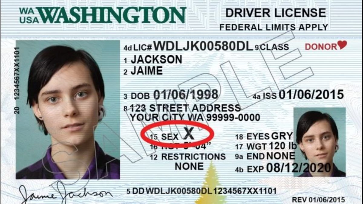 'X' gender now an option for Washington residents on licenses, IDs