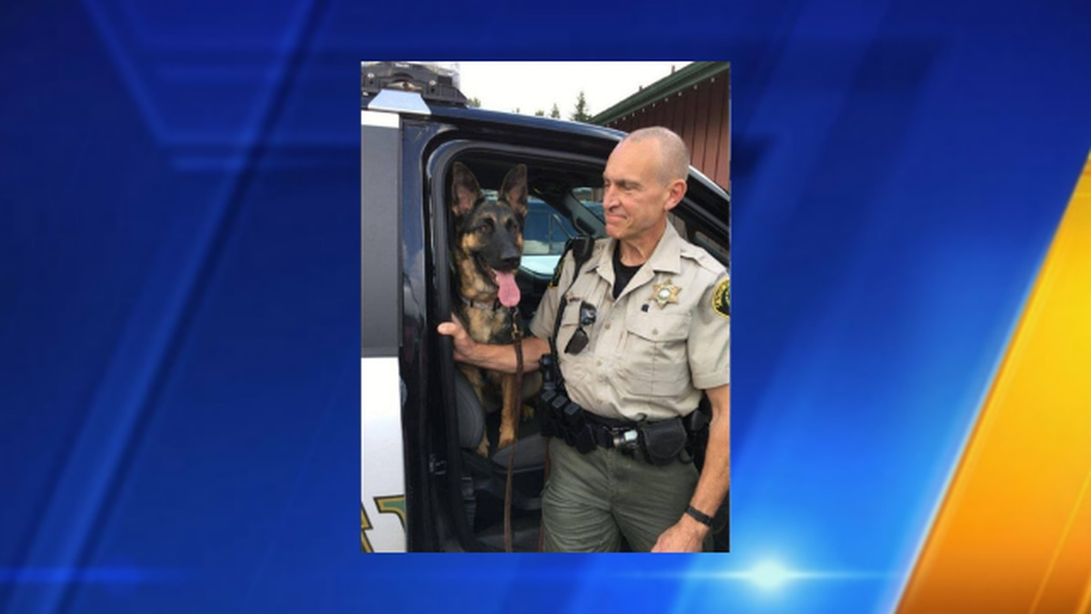 Deputy adopts runaway dog he found in February snowstorm
