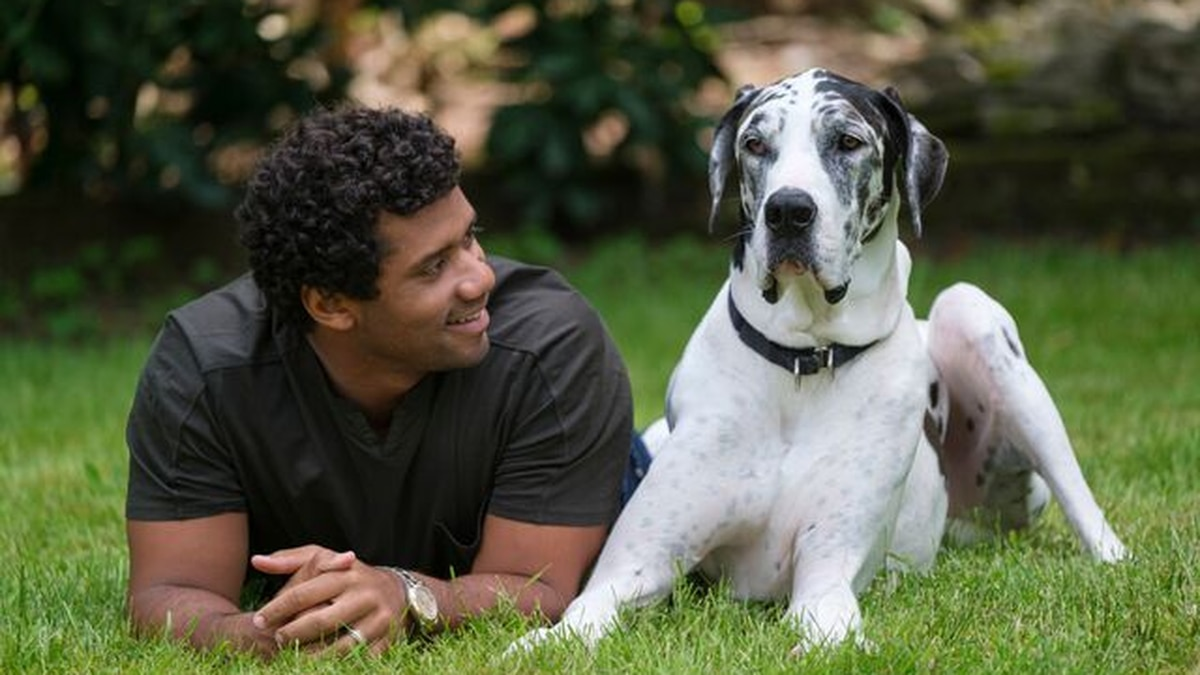 Russell Wilson stars in new public service announcement on domestic violence, animal abuse