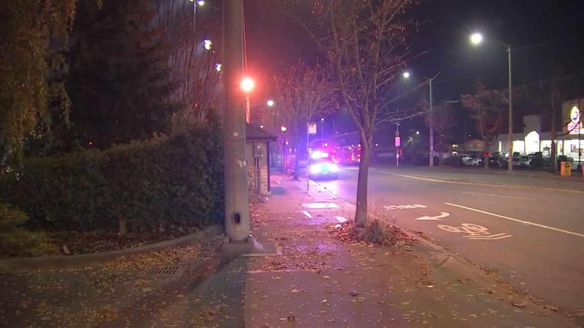 Police search for suspect(s) after stabbing in South Seattle