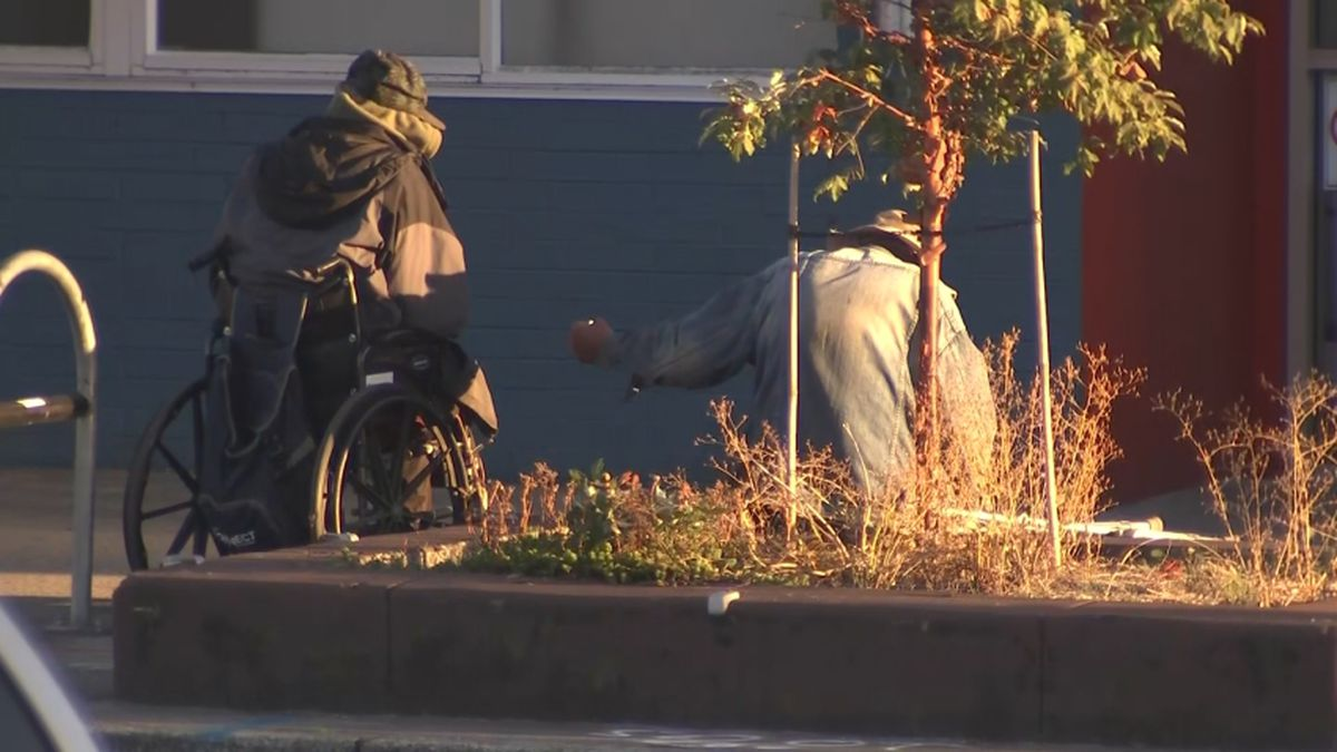 SDOT removing Lake City planters live after businesses complain of human waste