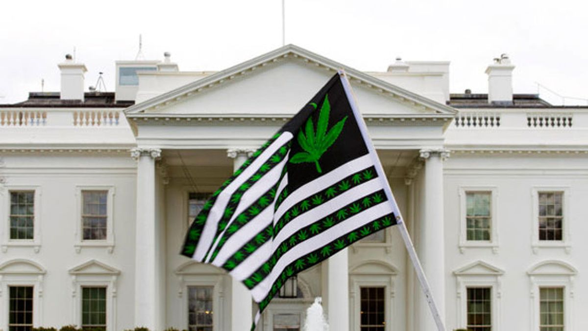 Former AG says 'it's possible' feds will raid pot shops when Trump takes power