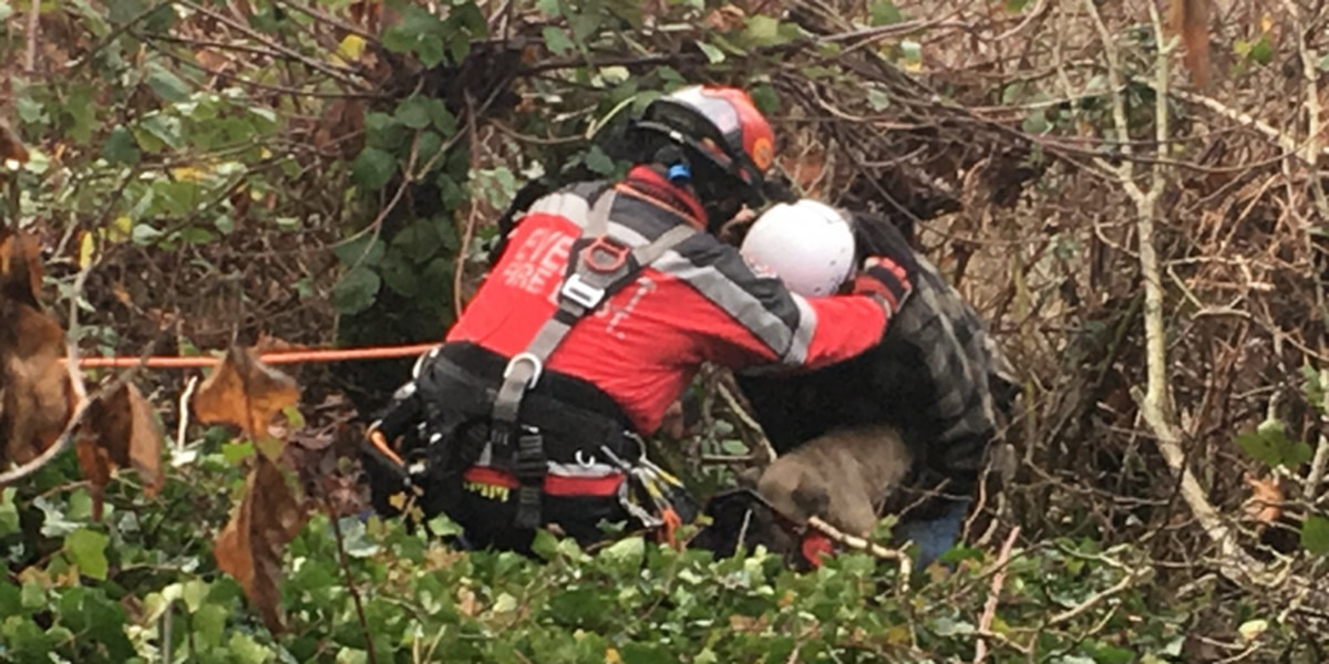 Crews rescue dog and owner found stuck down 35-foot embankment