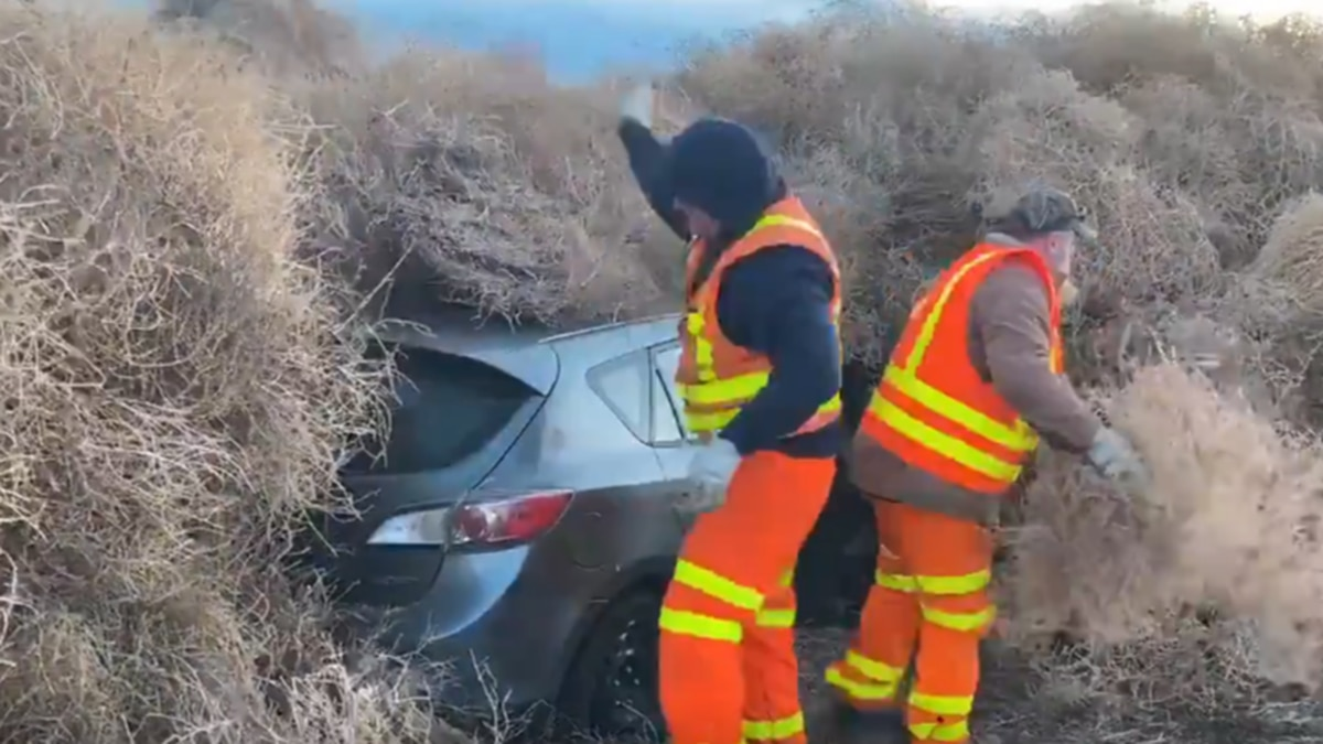 Crews remove massive tumbleweed pile that trapped cars in Washington