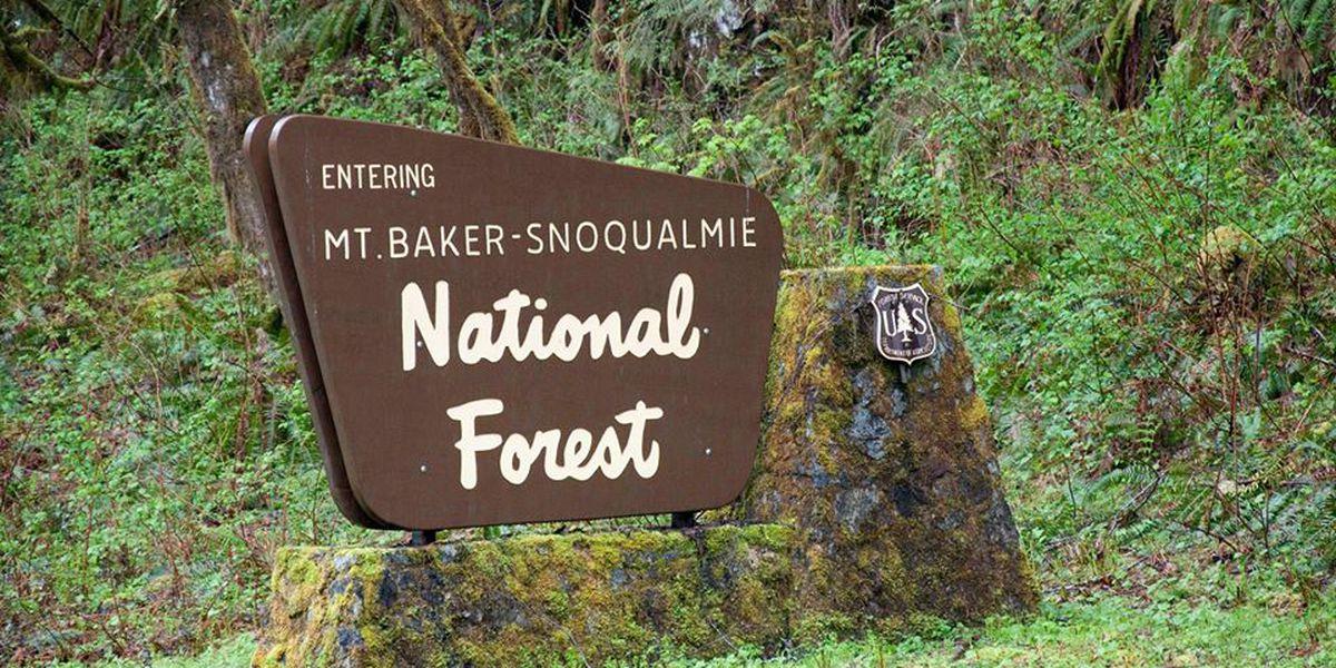 Mt. Baker-Snoqualmie National Forest entrance sign stolen