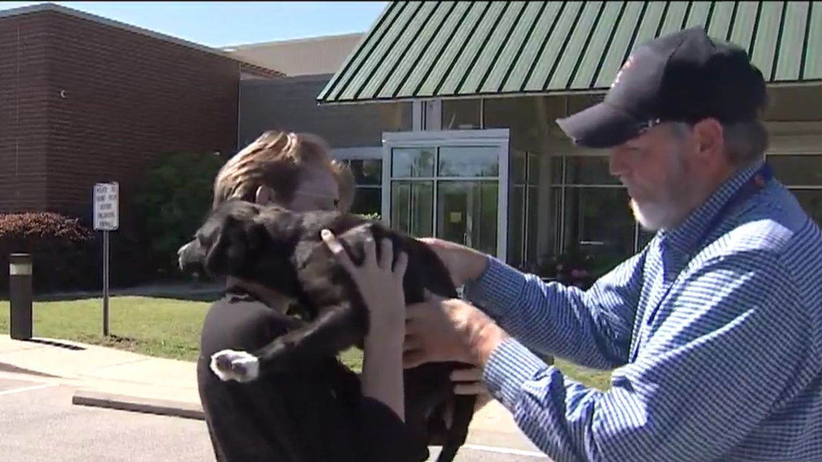 Family camps out for 27 hours to adopt dog with 'black heart