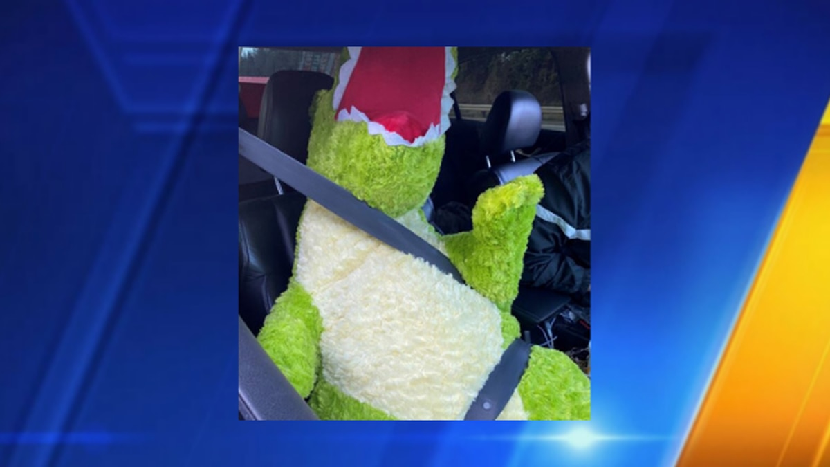 Driver caught with stuffed dinosaur in HOV lane on I-5