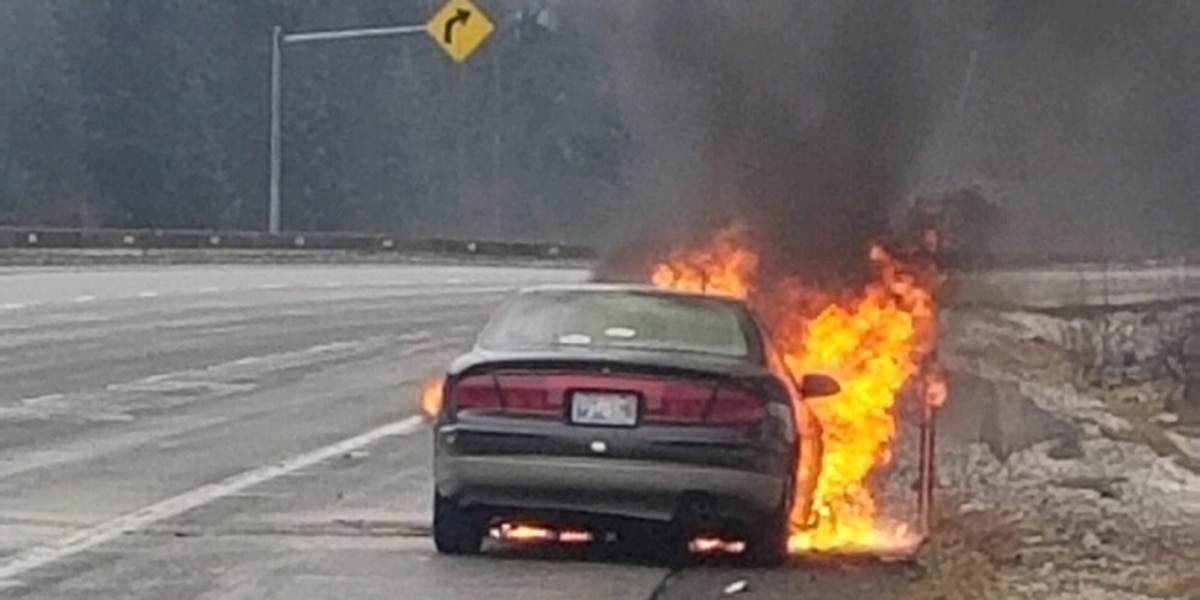 Deputies save dog from burning car on I-90