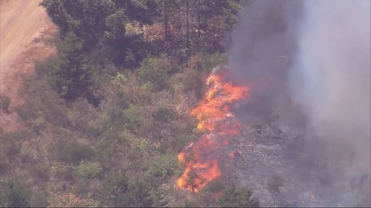 Outdoor burning on DNR land banned statewide