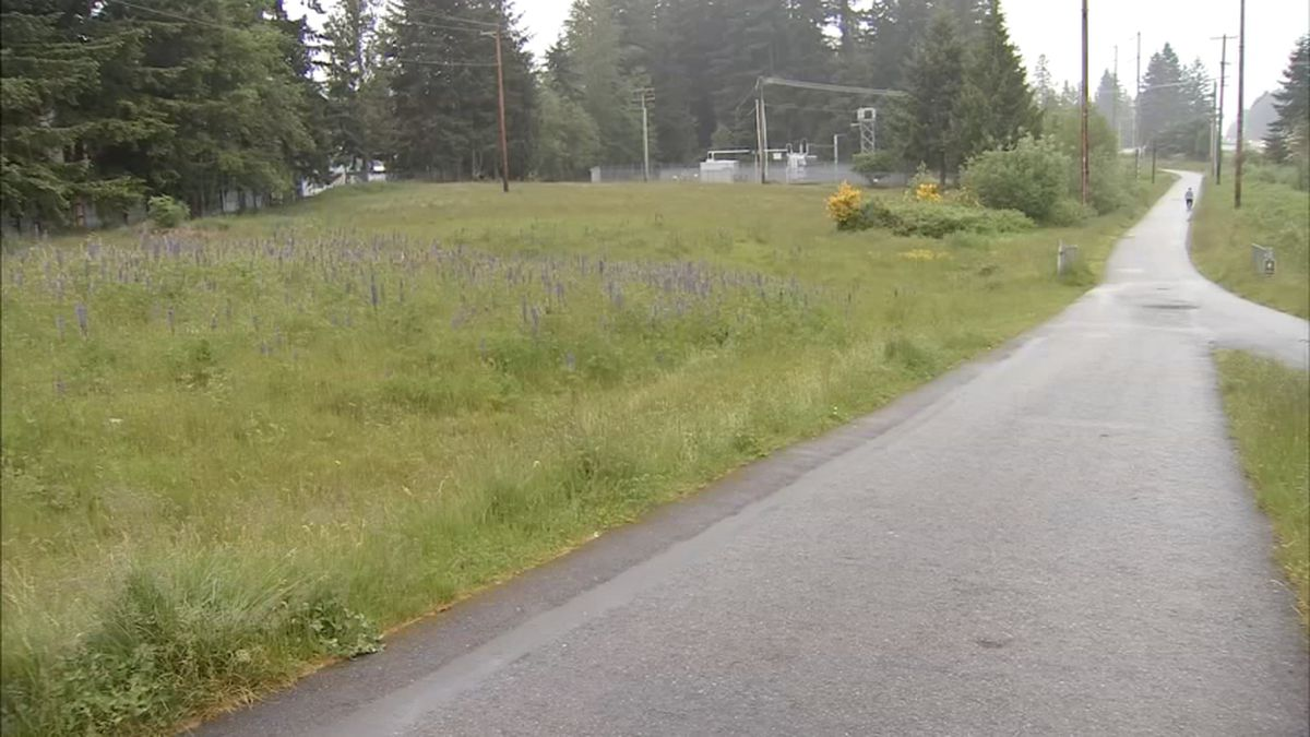 Man released from prison suspected in assault on North Sound trail