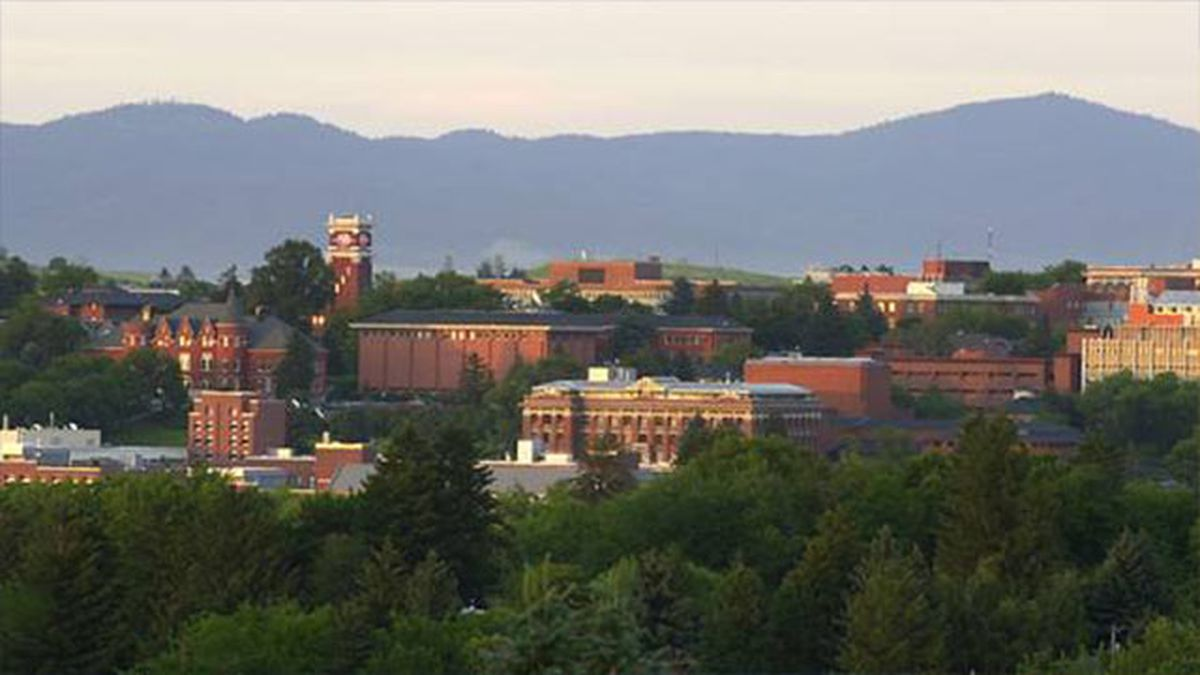 WSU postpones spring commencement to August, offers online option in May