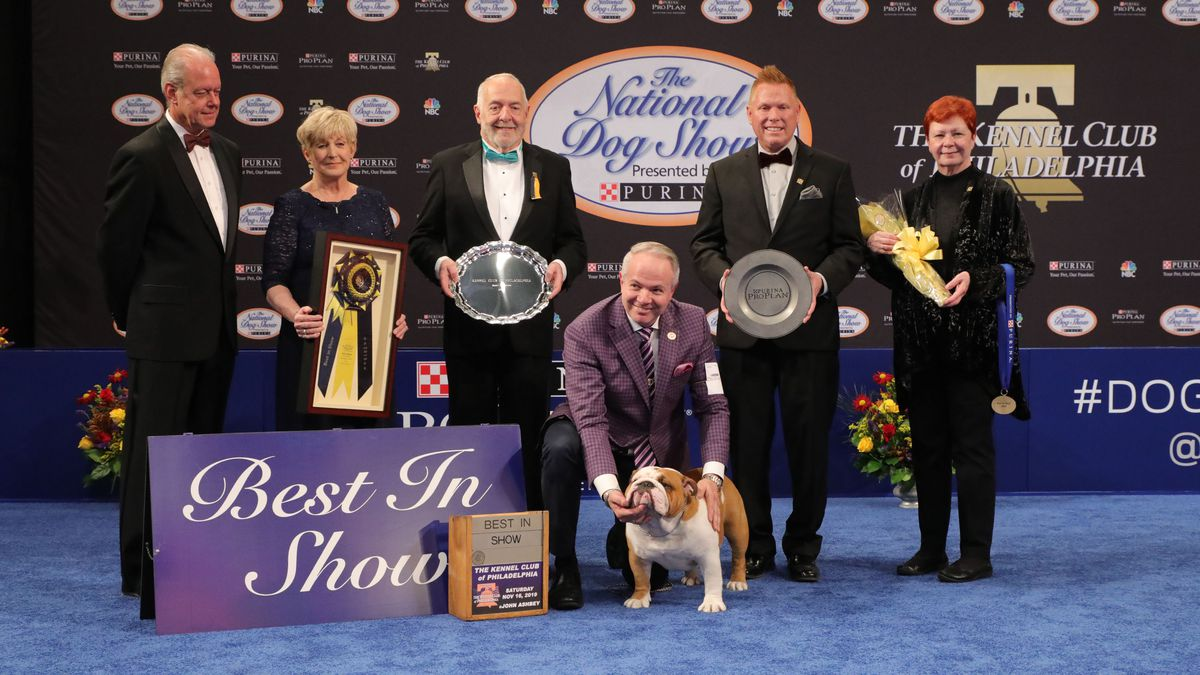 6 things to know about The National Dog Show